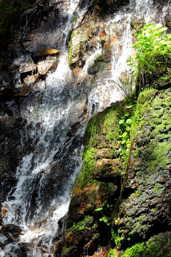 Schwierige Lichtverhältnisse am Wasserfall, Menzenschwand