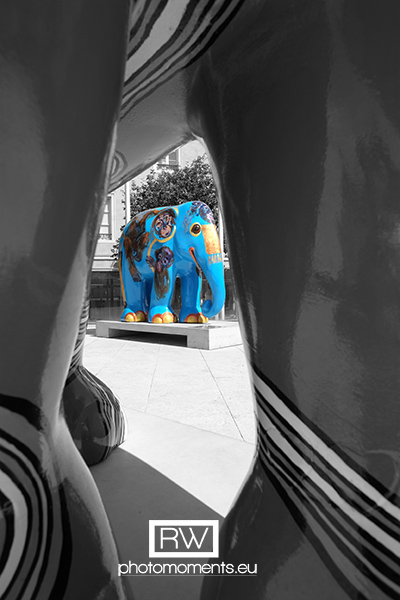 Elephant Parade in Luxembourg-Stadt