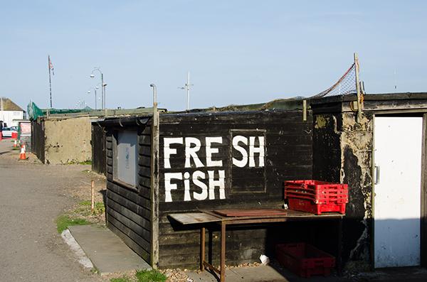 Frischer Fisch aus Hastings