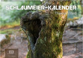 Schlaumeier Kalender 2015